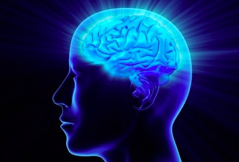 iq testing psychology Psychologists | Toms River, Manahawkin, Freehold, NJ
